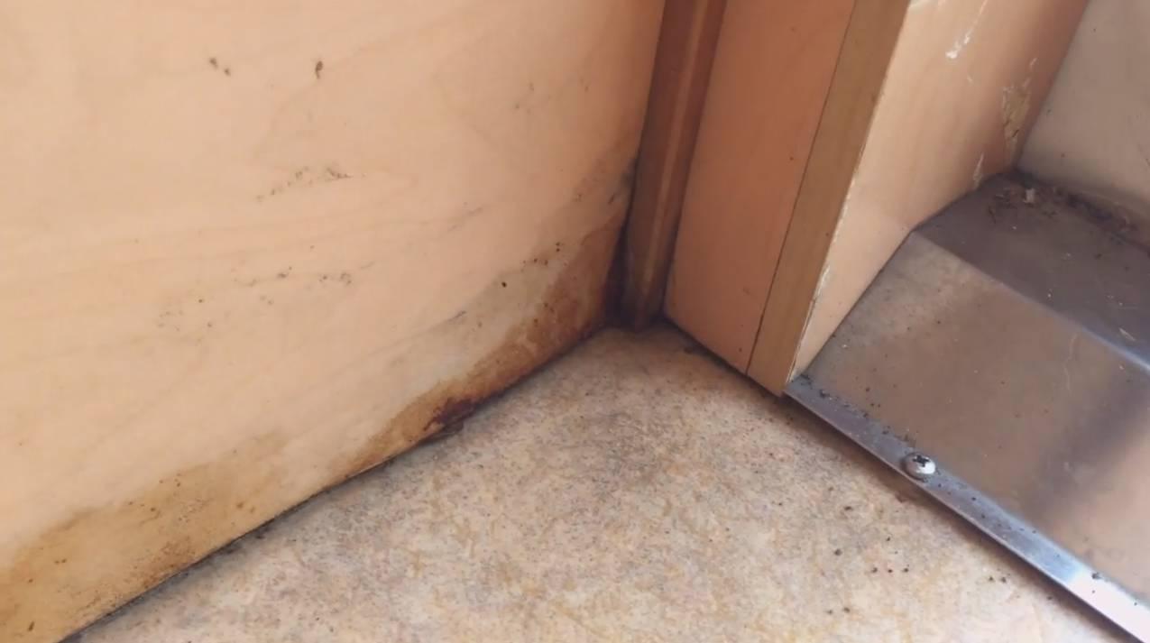 Gebrauchte Wohnkabine mit Wasserschaden